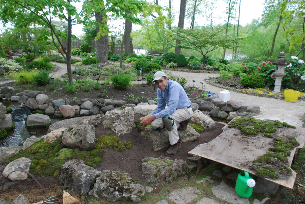 I Also Built A Moss Garden On The Slope Near The South Entrance To The Japanese  Garden, Seen In Before And After Conditions In The Following Two Photos.