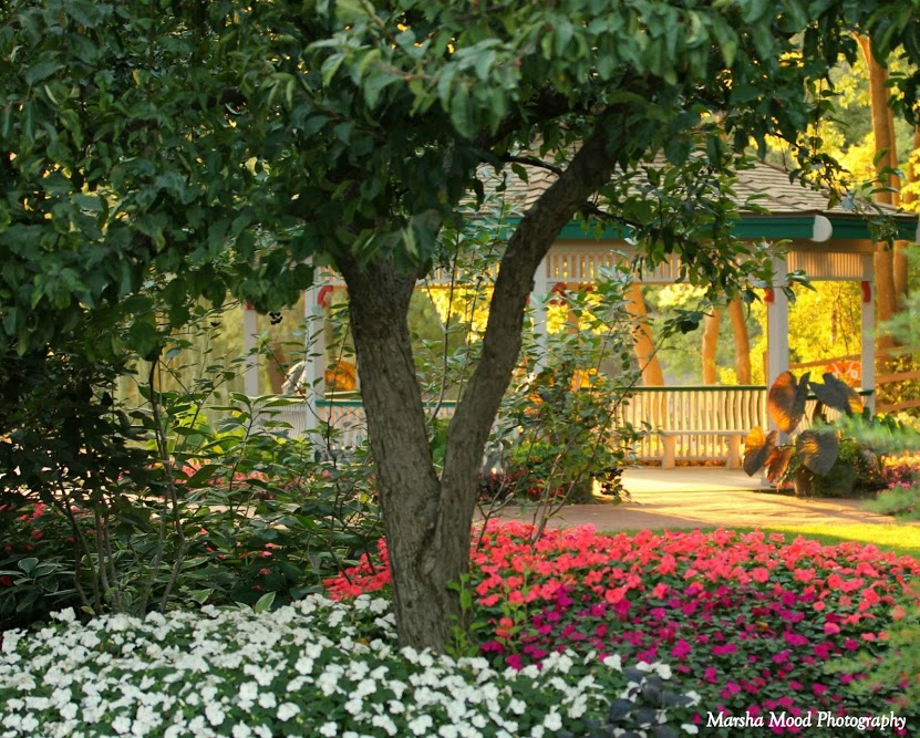 Superbe Gazebo   Rotary Botanical Gardens