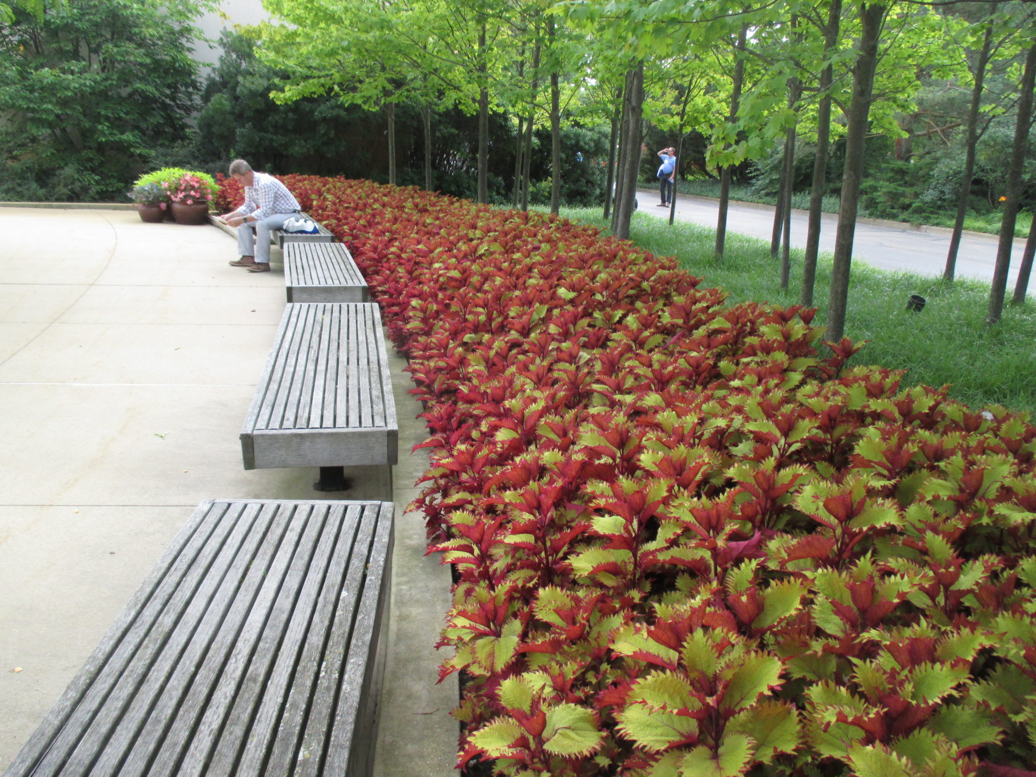 IMG_1633 - Rotary Botanical Gardens