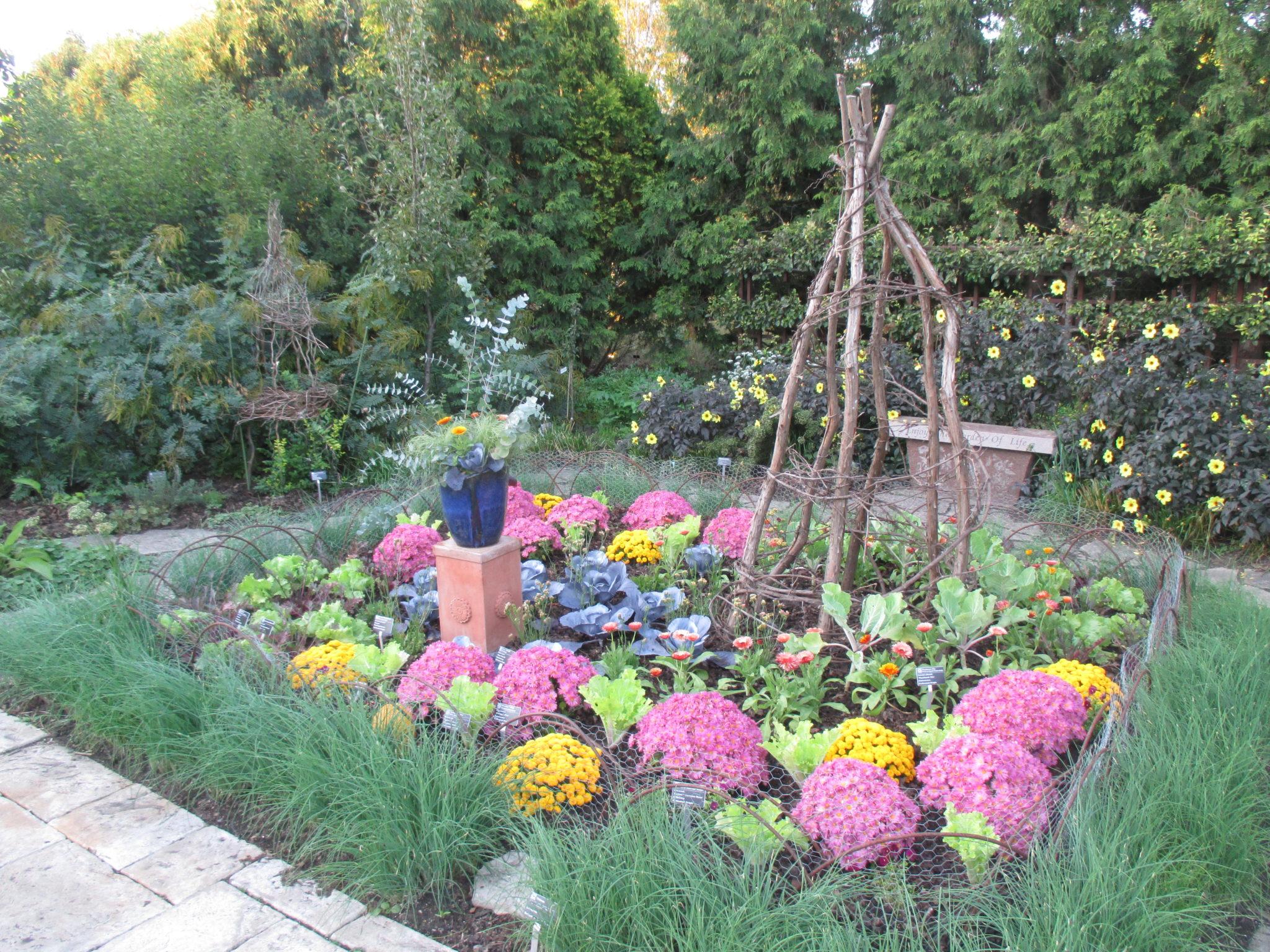 Olbrich In Autumn Rotary Botanical Gardens