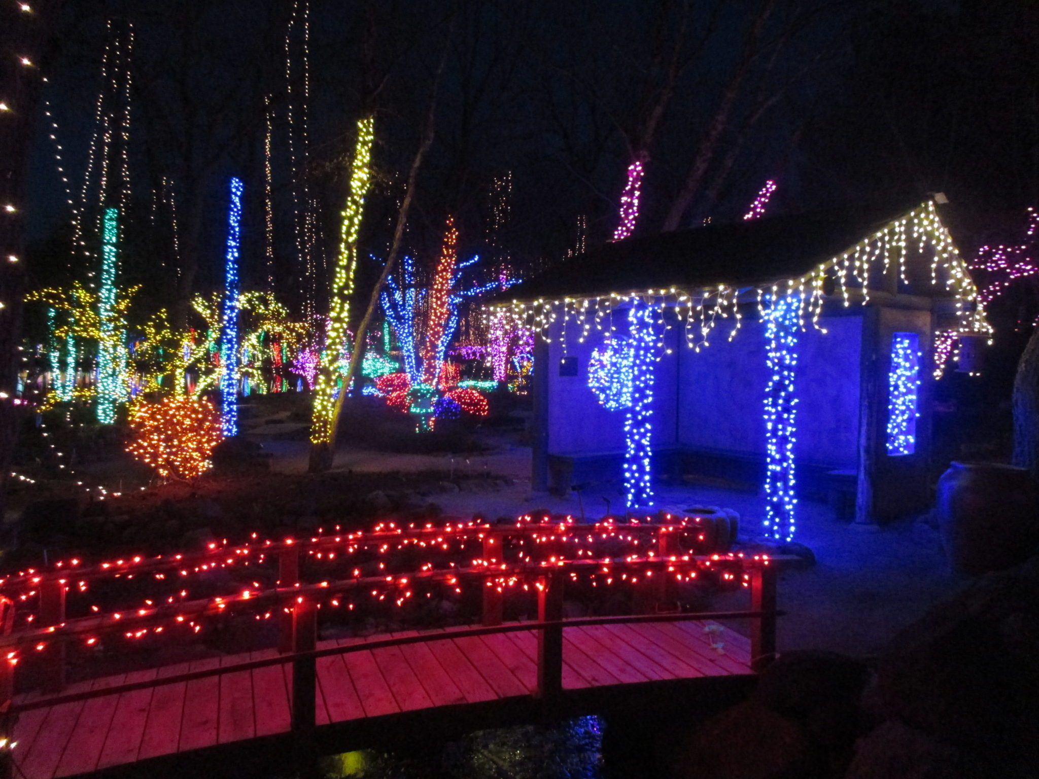 holiday light show rotary botanical gardens