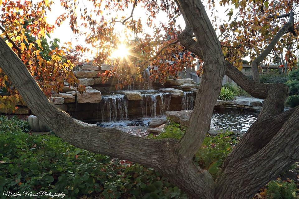 Japanese Garden Rotary Botanical Gardens