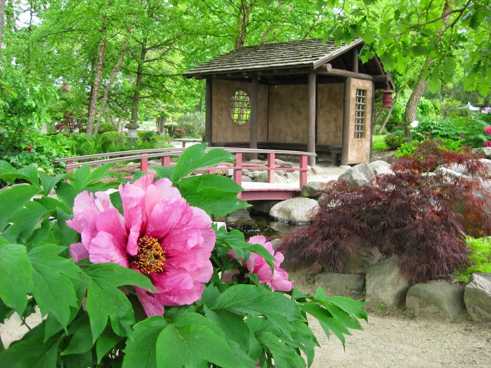 Japanese Garden Rotary Botanical Gardens - Japanese garden plants