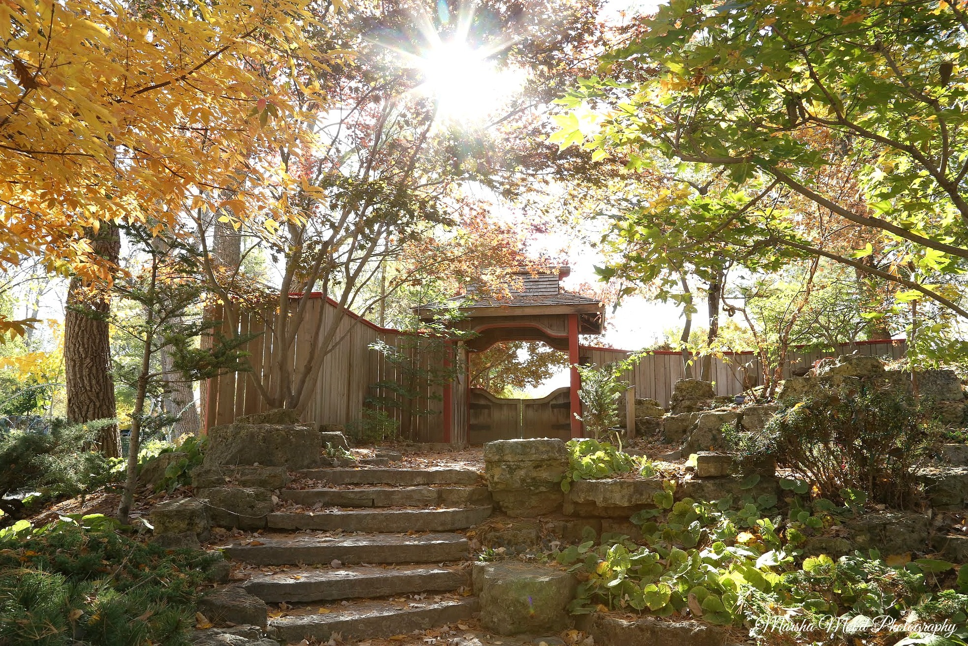 Wedding Gardens - Rotary Botanical Gardens