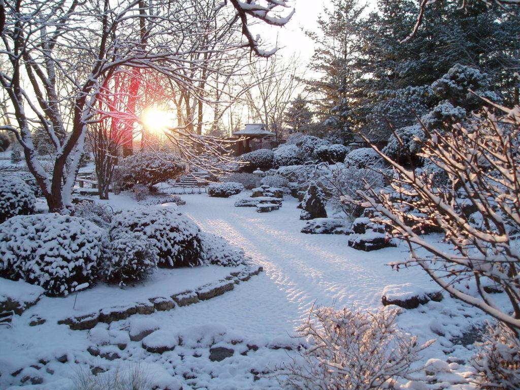 in memory of karen rotary botanical gardens