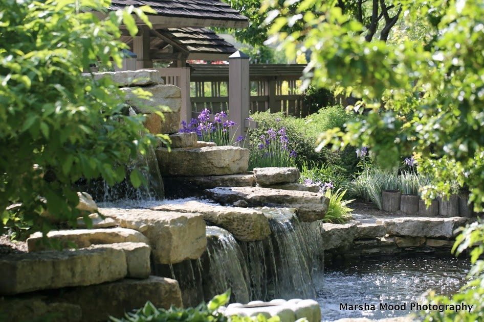 learn more about japanese gardens